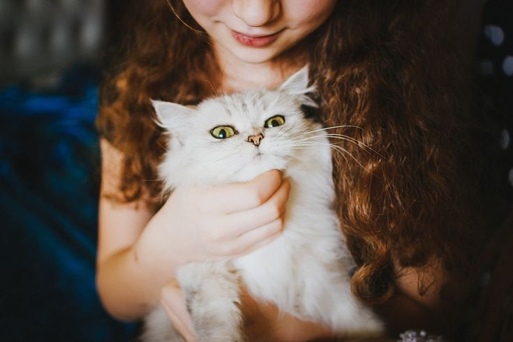 Having a pet is great for teaching children love and respect for animals.  Discover all the benefits having a pet at home can have for your child.