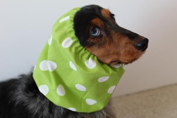 Green Polka Dot Dog Snood Dog Ear Covering Dog Ear Protector