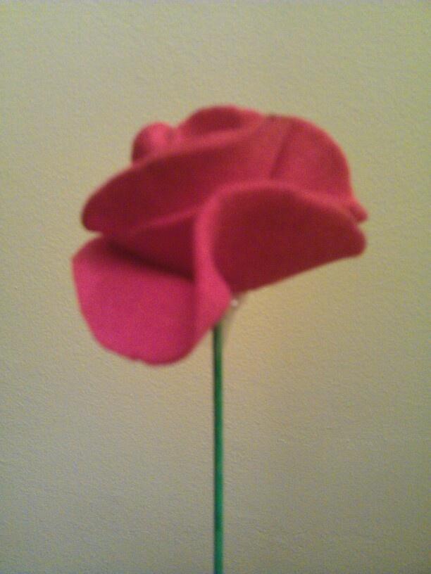 Rosa de feltre
