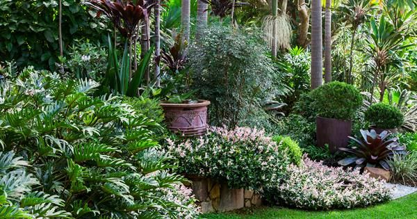 Take a journey through an inspiring, lushly planted garden on a large sloping site.