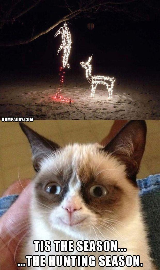 Grumpy Cat Christmas, Funny Christmas Lights, What Makes Grumpy Cat Happy