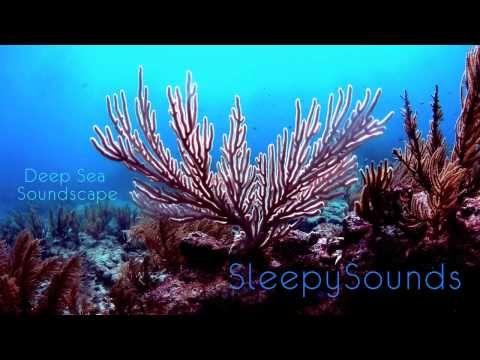 Deep Sea Soundscape – 9 hours of underwater ambience – Deep Ocean Sleep ...