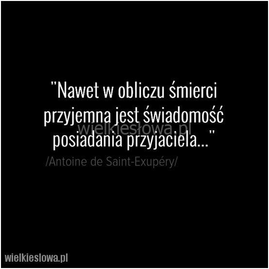 Nawet w obliczu śmierci przyjemna... #SaintExupery-Antoine-De,  #Przyjaźń, #Relacje-międzyludzkie, #Śmierć