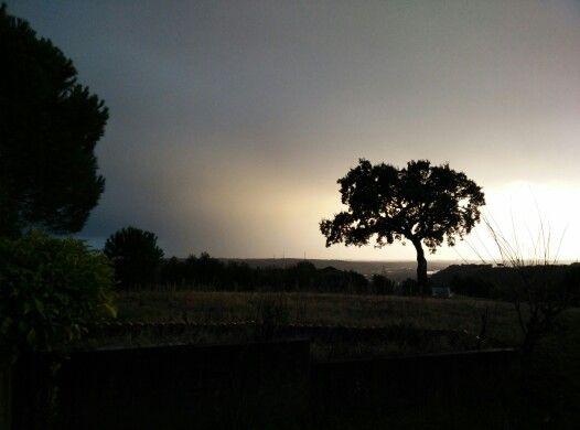 Pioggia e Quercia
