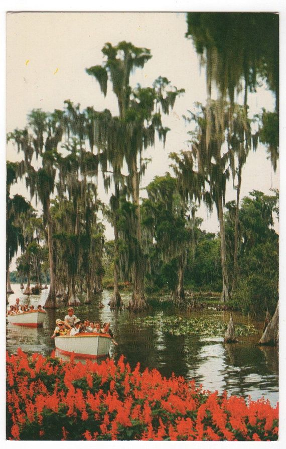 60 best Cypress Gardens The most beautiful p on earth. For me ...