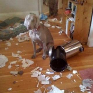 @hrabbott  wasn't me!