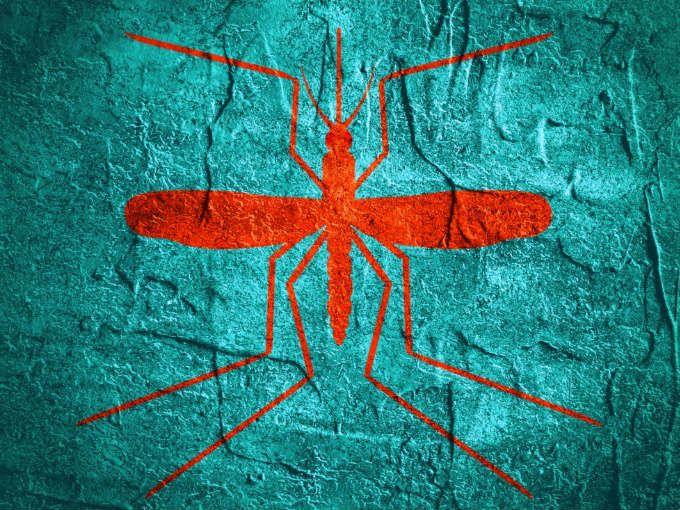"""A veces parece que hay personas más atractivas para los mosquitos que otras. Hay quienes regresan de unas vacaciones a la orilla del bosque sin una picadura, y quienes mueren de comezón toda la noche porque esos insectos """"se los cenaron"""". Pero, ¿por qué pasa eso? Gran parte de la respuesta está en las cantidades de CO2 que emitimos a través de la respiración y atraen a los mosquitos. Cada vez que exhala, un ser humano adulto emite hasta 100 mg de dióxido de carbono, los cuales nos delatan e…"""