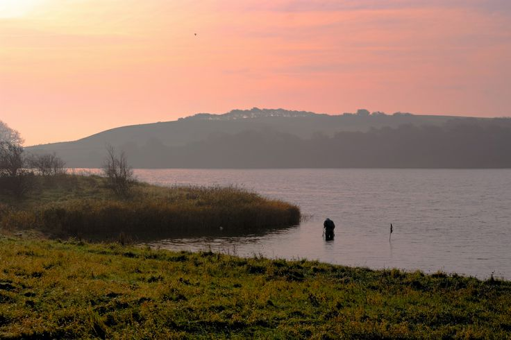 Morning light at Noret, Dyreborg