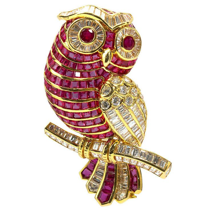 Diamond Ruby Owl Brooch | From a unique collection of vintage brooches at http://www.1stdibs.com/jewelry/brooches/brooches/