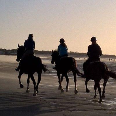 Paardrijden Zeeland