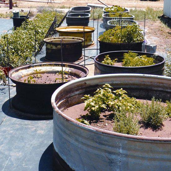 Aussie Mum Gardening From Scrap: 336 Best Recycled Garden Images On Pinterest