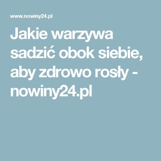 Jakie warzywa sadzić obok siebie, aby zdrowo rosły - nowiny24.pl