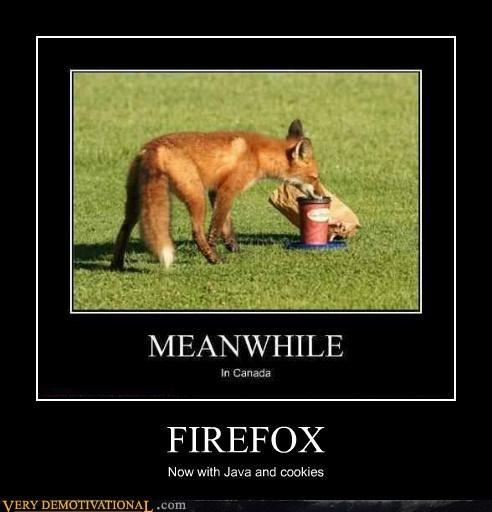 http://verydemotivational.files.wordpress.com/2012/06/demotivational-posters-firefox.jpg