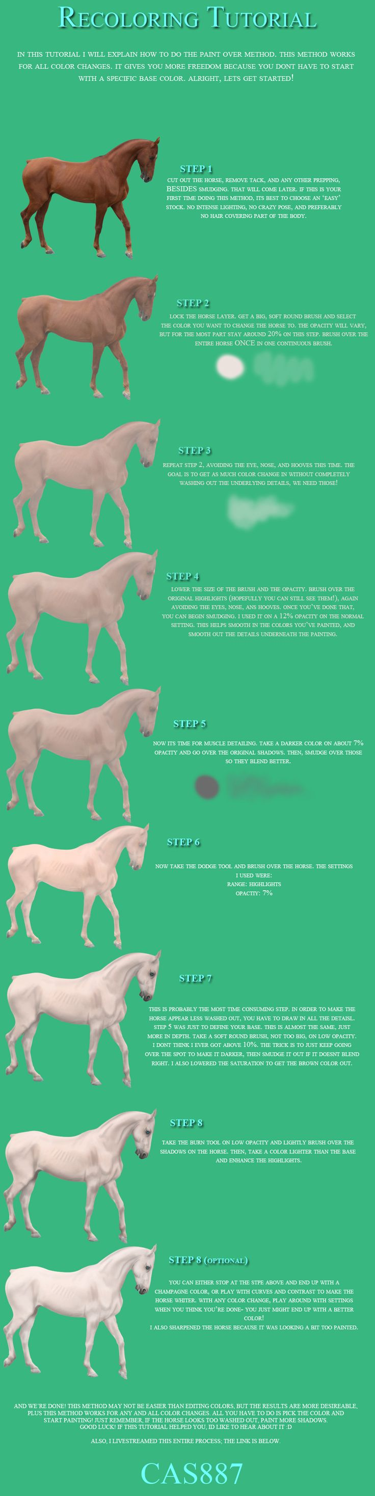 52 best horse schemes images on pinterest horses drawing color changing tutorial by cas887 on deviantart nvjuhfo Choice Image
