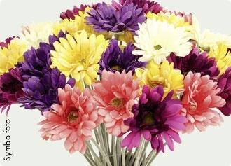 Seidenblüte Gerbera  #bellaflora  #silk flower  #flower  #blumen