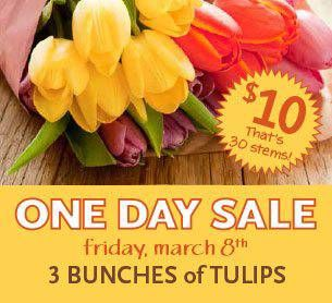 one day sale on tulips