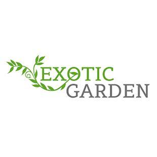 Frön, lökar, sättpotatis, tillbehör mm. - Exotic Garden