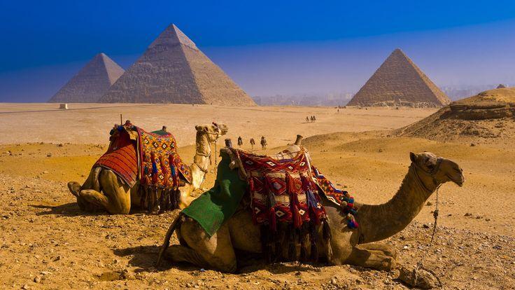 египет, пирамиды, верблюды, небо