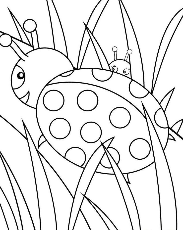 awesome ladybug free pictures to colors pictures  malbuch