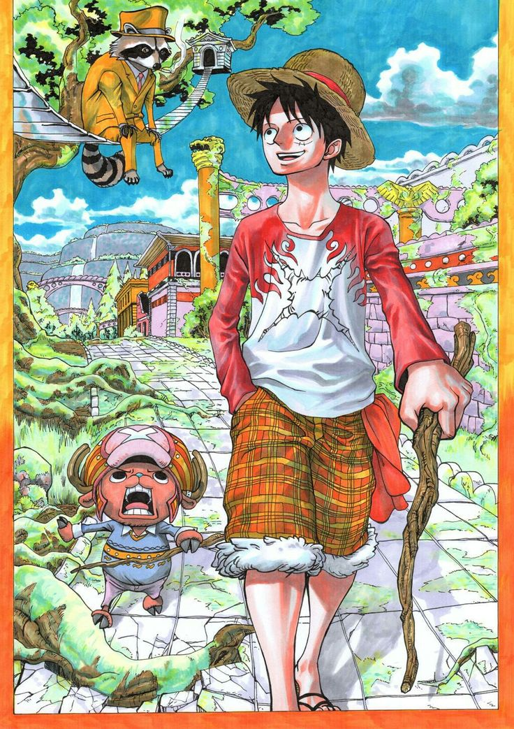 Pin by KING on One Piece in 2020   One piece main characters, One piece manga, One piece luffy