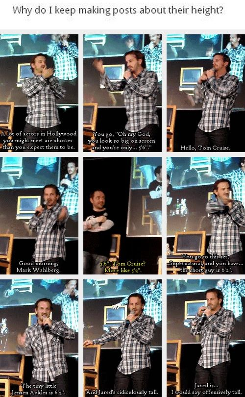 """(gif set) """"The tiny little Jensen Ackles is 6'2"""".""""... """"Jared is... I would say offensively tall."""" - Richard Speight Jr. Love him. And can I just point out marks little """"hair"""" flick... Bless him!"""