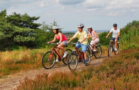 Cycle hire for all ages and a choice of routes abilities