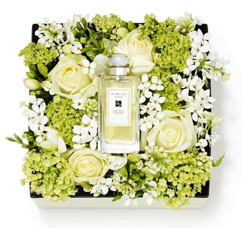 New London Blooms Collection from Jo Malone | Flowerona