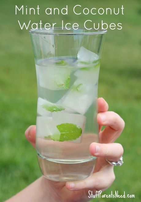 Coconut ice cube with mint in the glass of water. Healthy drink....