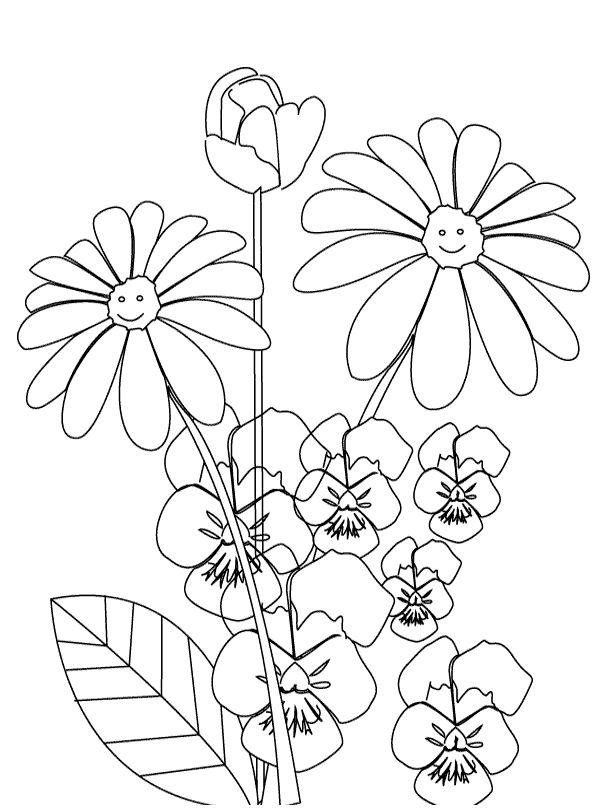 Ms de 25 ideas increbles sobre Hermosos dibujos de flores en