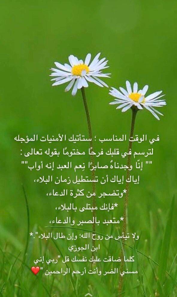 Pin By زخات المطر On باقة فرح Herbs Plants Dandelion