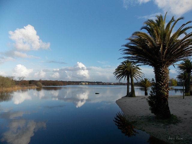 Lago Real, Mira, Portugal