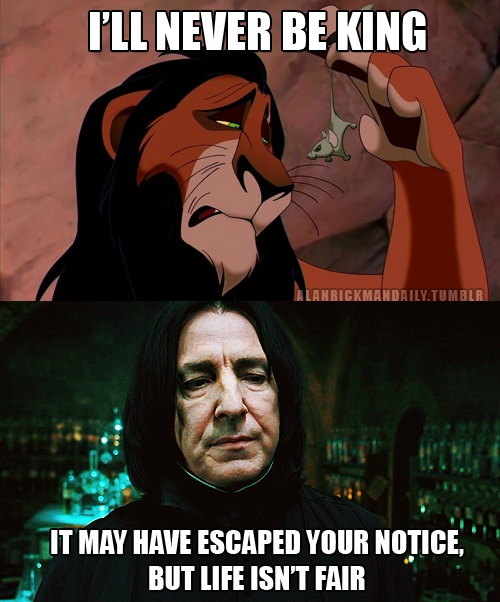 17 Best images about Harry Potter on Pinterest | Funny ...