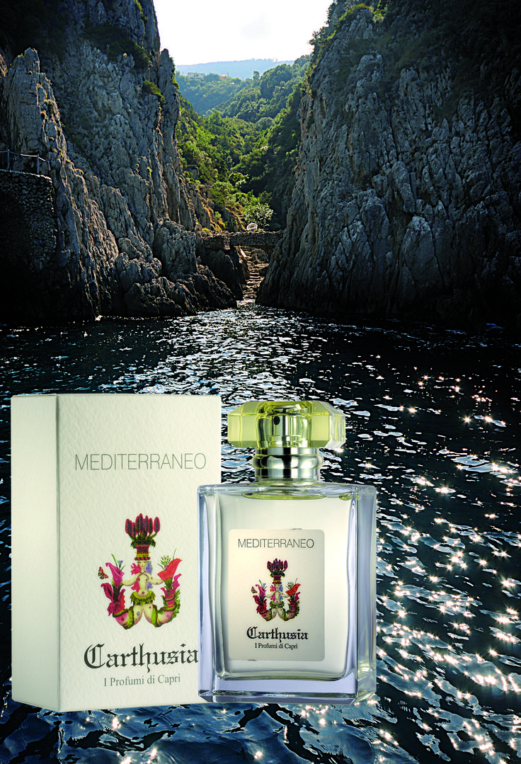 Dedicated to the #cradle of all the #great #civilizations of #Europe #Africa and #Asia #Mediterraneano is a #solar #fragrance #original yet #versatile which blends the #classical #pristine #freshness of #lemon #leaves with the #youthful and #sparkling tones of #greentea #carthusia #capri #italy #rosinaperfumery #glyfada #athens #greece #shoponline : www.rosinaperfumery.com
