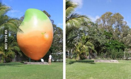 This 10 tonne mango was stolen last night and I am wondering how did someone manage to take it without being noticed