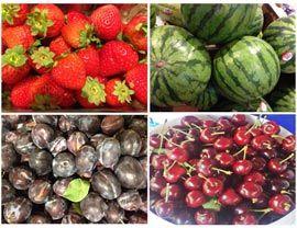 Low-Carb Obst - Welche Obstsorten sind erlaubt?