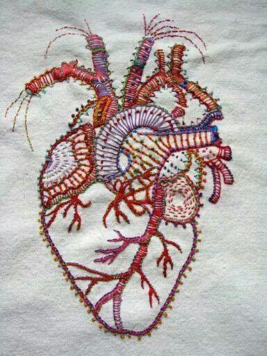 Elişi ile yapılan anotomik kalp çalışması