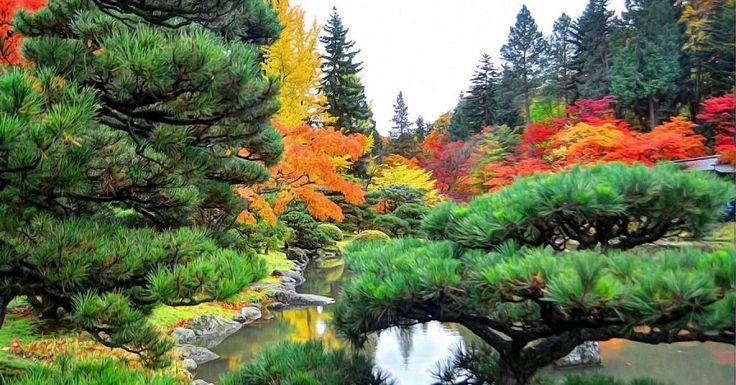 Imágenes otoñales espectaculares para soñar y disfrutar de la naturaleza