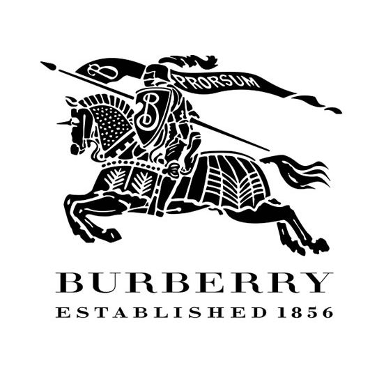 Burberry - Didot Bold, which is a neoclassical serif font