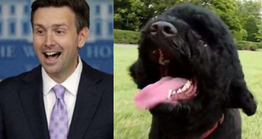 Josh Earnest dodges question on Obamas' dog Sunny biting visitor, reporters find it hilarious