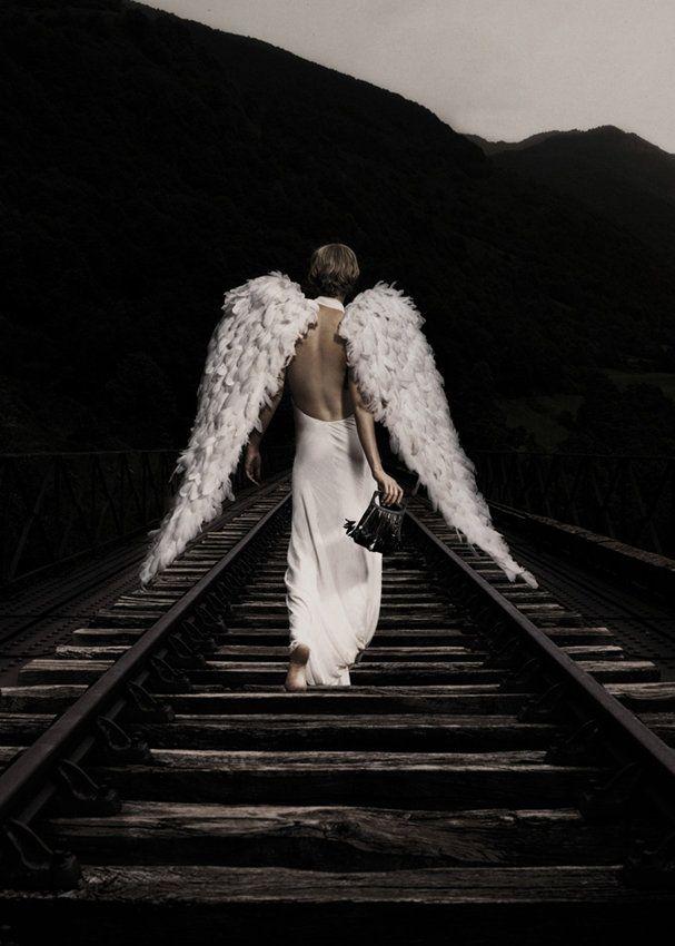 фото ангела с крыльями со спины различными цветками, тонкими
