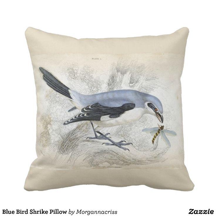 blue pillow clipart. blue bird shrike pillow clipart
