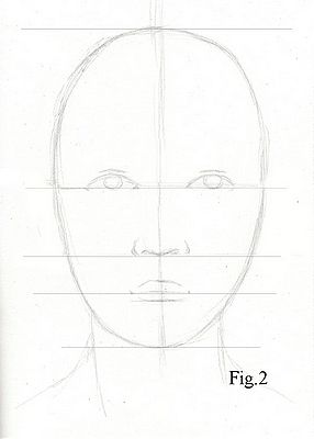 Drawing lesson for Beginner artists: Proportions of the face, front view – Step 3 : Guidelines
