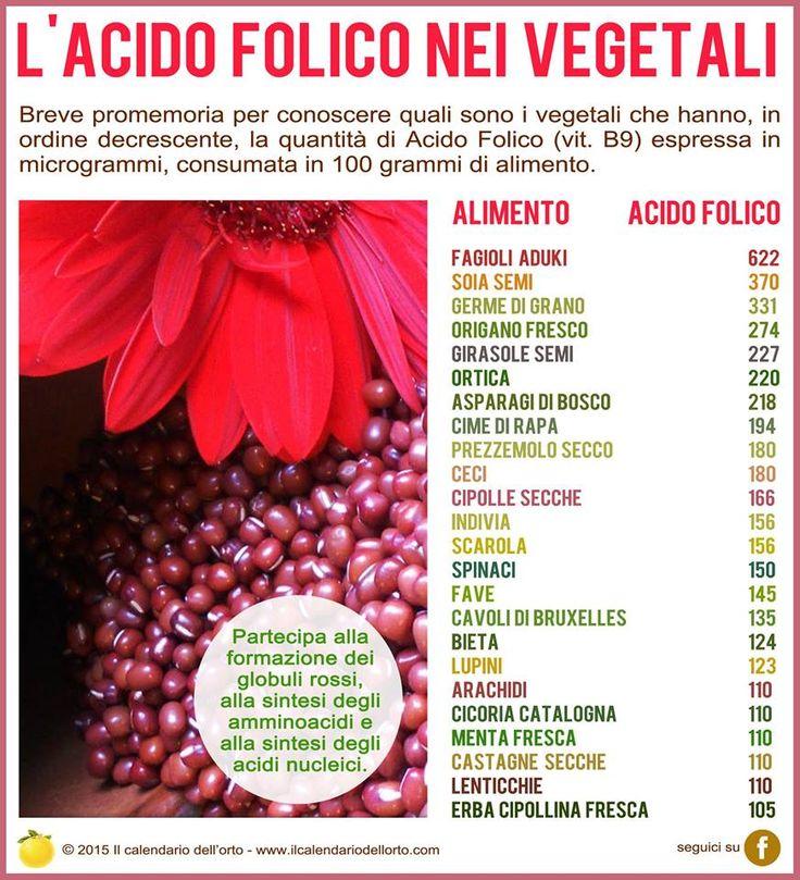✔ La Vitamina B9 (acido folico) nei vegetali