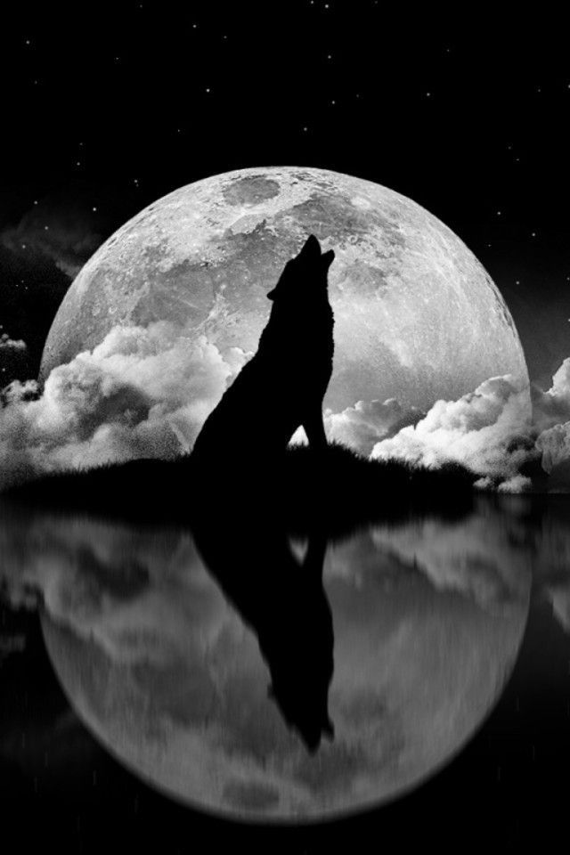 Howling Wolf Silhouette With Moon And Clouds