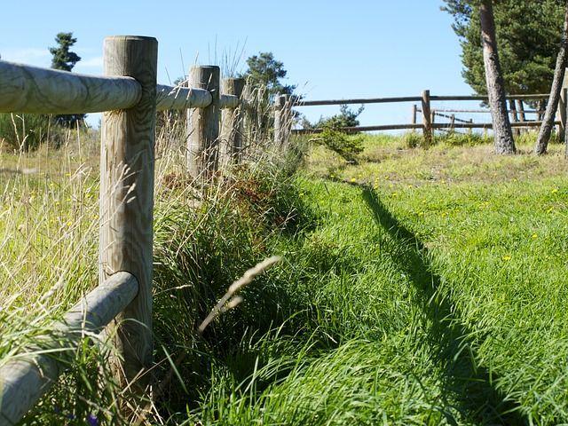 Деревянный Забор, Трава, Поле, Весна, Сельских Районах