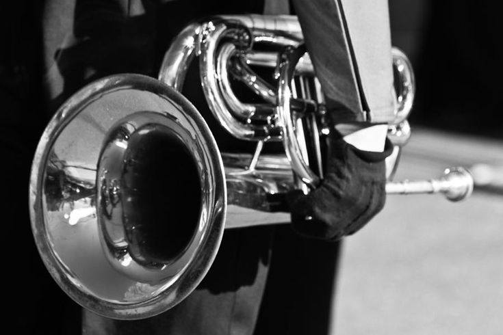 """Marching Band Horn Bw by James BO Insogna"""""""