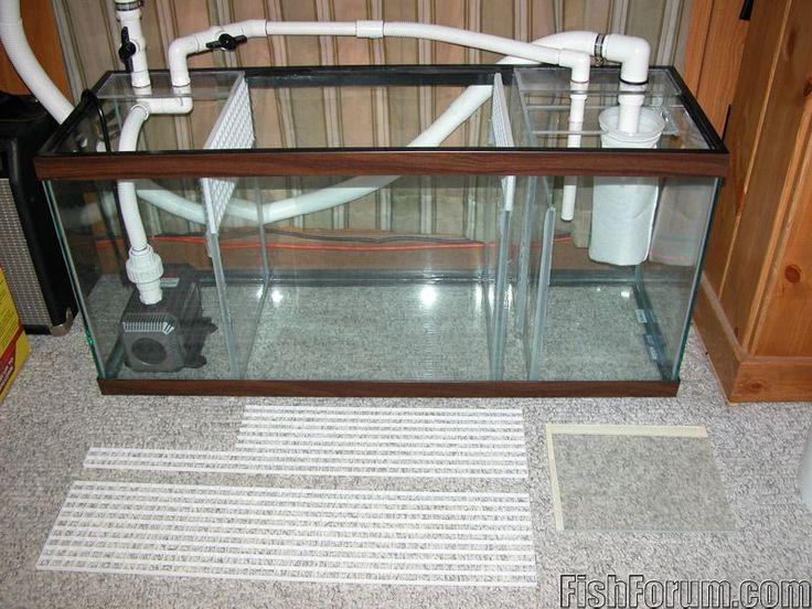 building sump aquarium