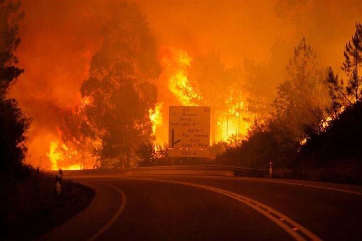 Portekiz'in orta kesiminde çıkan büyük orman yangınında 39 kişi hayatını kaybetti.