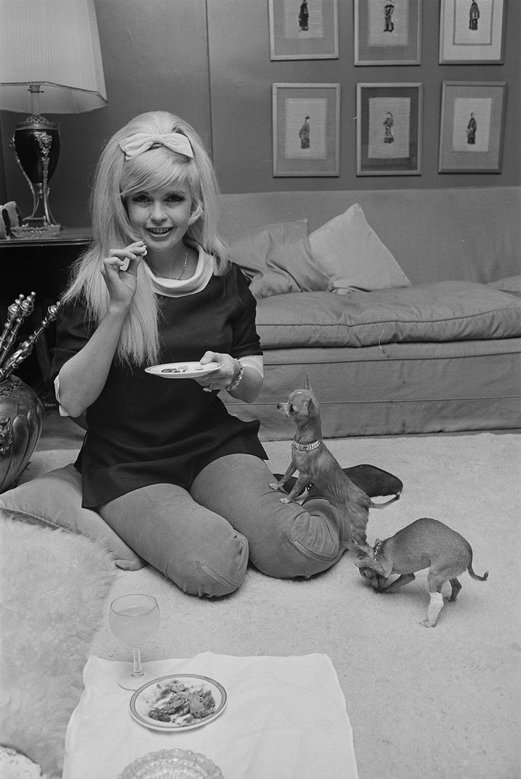 Jayne mansfield and pets