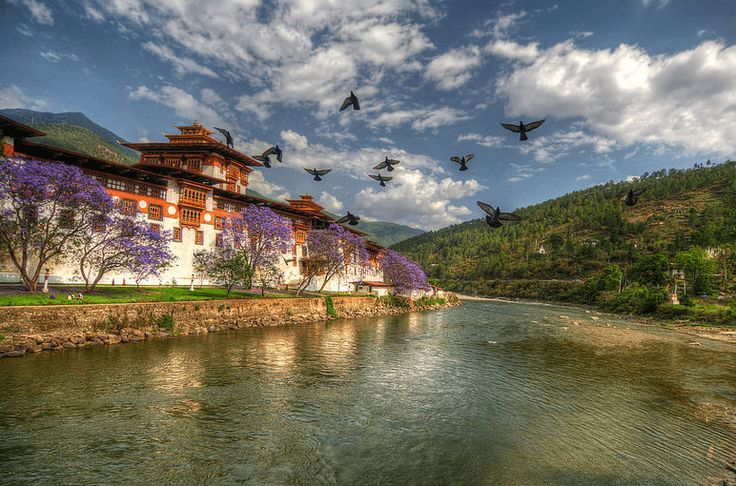 14 tourist attractions in Bhutan including sightseeing, green valleys, snow capped peaks, cold climate and rich heritage and culture of the place. #Travel #Trips365
